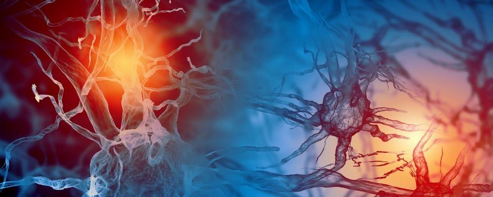 Hormonen die bij stress een rol spelen